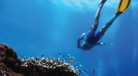Snorkelling and Scuba Diving in Sri Lanka