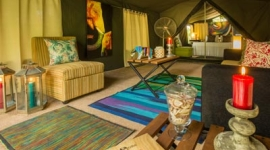 Tented safari camping experience with Sri Lanka Day Tours