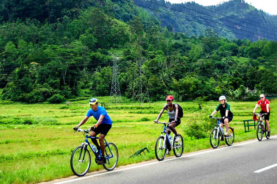 Paddy Trail for Cyclist in Galle