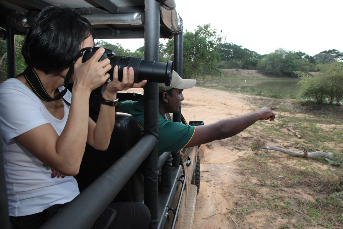 Leopard photography safari at Wilpattu National Park Sri Lanka. Feel excellent Leopard safari Sri Lanka experience at wilpattu National Park. Book your Leopard safari today.
