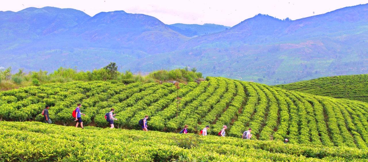 Trekking, Trekking Trails, Trekking Sri Lanka, Hiking Sri Lanka, Sri Lanka Holidays