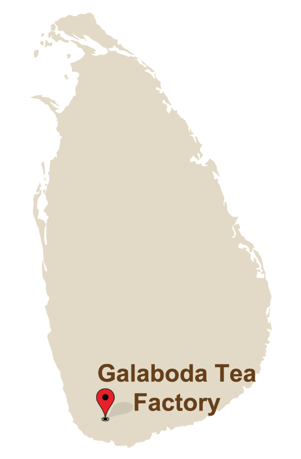 Galaboda Tea Factory