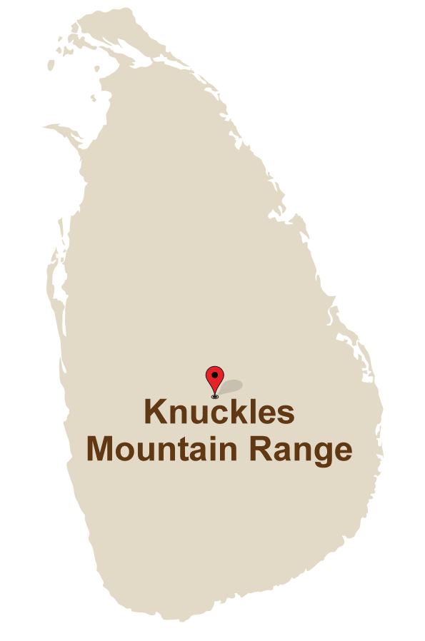 1 Mahoora Camps at Knuckles Mountain range