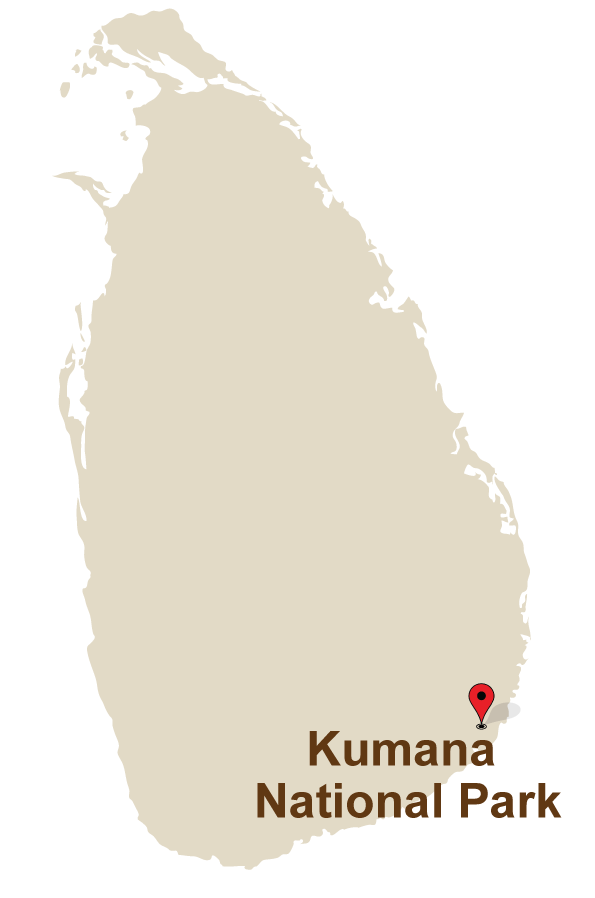 1 Mahoora Camps at Kumana