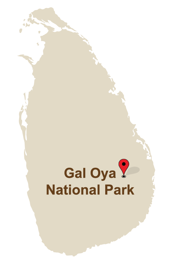 Gal Oya National Park
